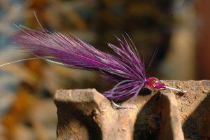 D.T. Special, purple