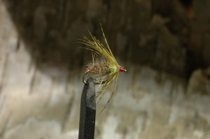 Flymph, brown/olive